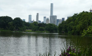 AIA-Convention-NYC-Park
